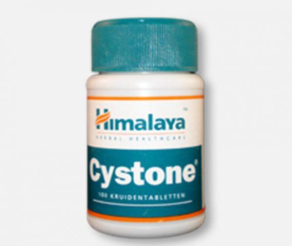 Cystone - Nieren en Urinewegen - Ayurveda Kliniek AGN
