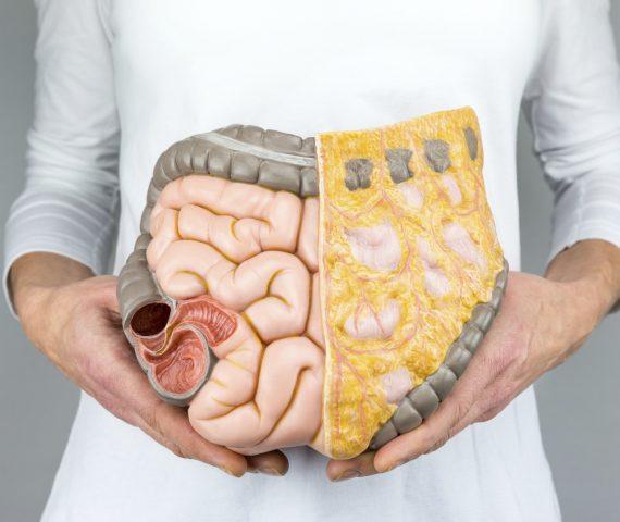 Ayurveda en de ziekte van Crohn